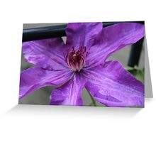 Star Climber Greeting Card