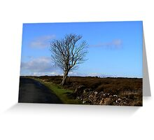 The Lonesome Tree Greeting Card
