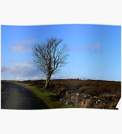 The Lonesome Tree Poster