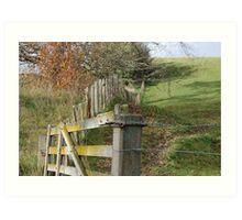 Rural fence  Art Print
