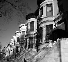 brown stone, park slope, brooklyn  by tim buckley | bodhiimages