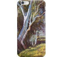 'River Bank Bends' iPhone Case/Skin