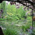 Monet's Garden (Giverny, France) by Christine Oakley