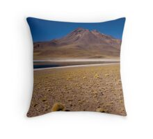 Face in the Sand Throw Pillow