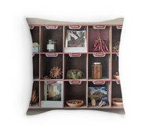 A Curious Collection, trompe l'oeil  Throw Pillow