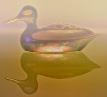 Reflecting Duck by mrthink