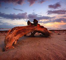 Strong Wood by I Nengah  Januartha