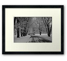 Tree-Lined in Winter Framed Print