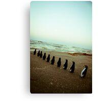 Penguin march Canvas Print