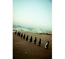 Penguin march Photographic Print