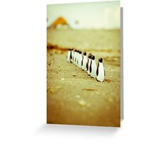 Penguins going for a walk Greeting Card