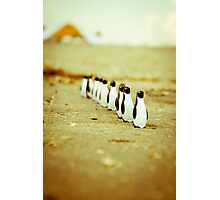 Penguins going for a walk Photographic Print