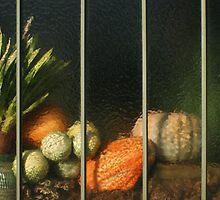 autumn harvest by Fran E.