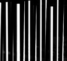 Lines In Black And White by MLabuda
