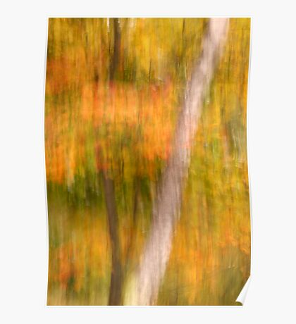 Autumn Abstracted Poster