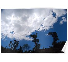 trees, blue sky and clouds Poster