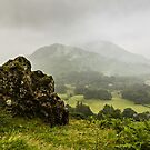 Atmospheric Patterdale by David Lewins