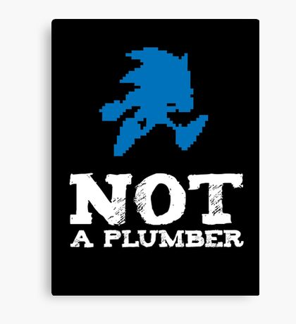 Not a plumber. Canvas Print