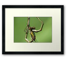 Hold me (emerald couple) Framed Print