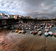 Tenby Harbour by mdgaskell