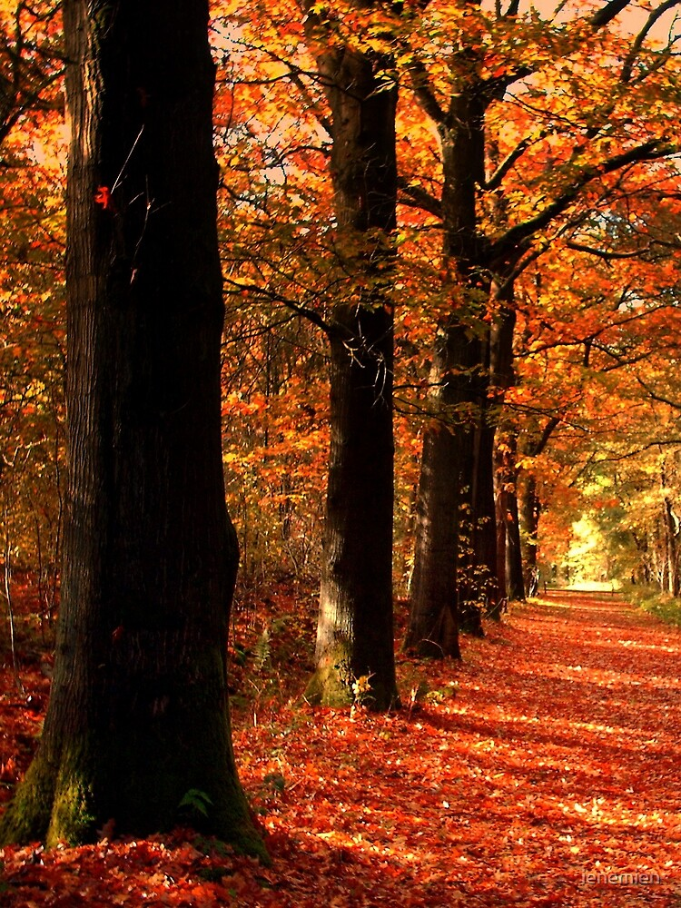 Lovely October Colors by ienemien