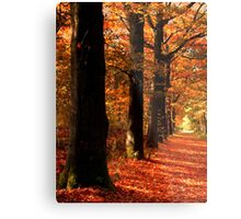 Lovely October Colors Metal Print
