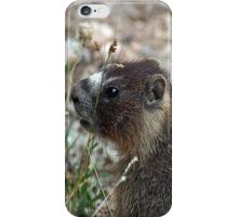 Rocky Mountain Marmot iPhone Case/Skin