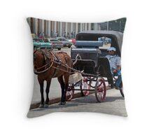 Horse & Buggy 3 Throw Pillow