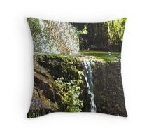 Like Streams of Water in the Desert Throw Pillow