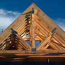 Roof Trusses in Place by Billlee