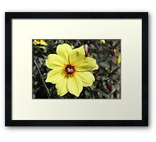 His Limitless Provision Framed Print