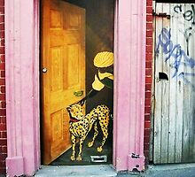 Leopard at the Door by Roz McQuillan