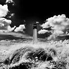 Cape Florida Lighthouse @ Dusk by Barbara Simmons
