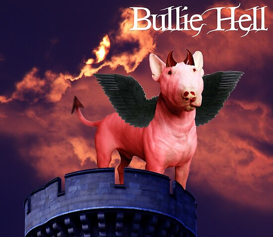 Bullie Hell by Louise Morris