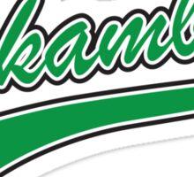 Kekambas Baseball Team Hardball Sticker