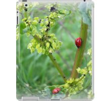 the ladybugs iPad Case/Skin