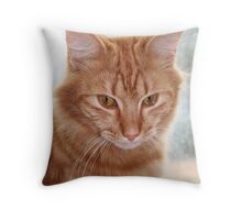 Barney at the Window Throw Pillow