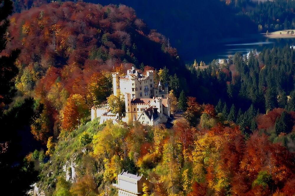 Hohenschwangau Castle or Schloss Hohenschwanstein by Jeri Garner