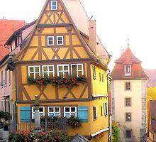 European Homes by Jeri Garner