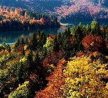 Fall Colors by Jeri Garner