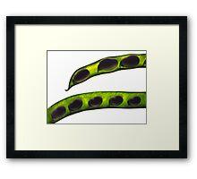 Lima beans Framed Print