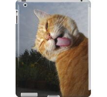 Ginger cat licking fur   iPad Case/Skin