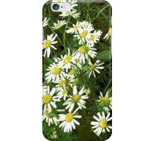 Sea Mayflower iPhone Case/Skin