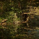 Bridge by the Pond by Jean-Pierre Ducondi