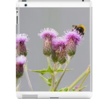 Bumble Bee Collecting Nectar from a Thistle iPad Case/Skin