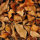 Leaf Pile by Teresa Young