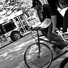 Boys, Bikes and Buses  by Anna Gizzi