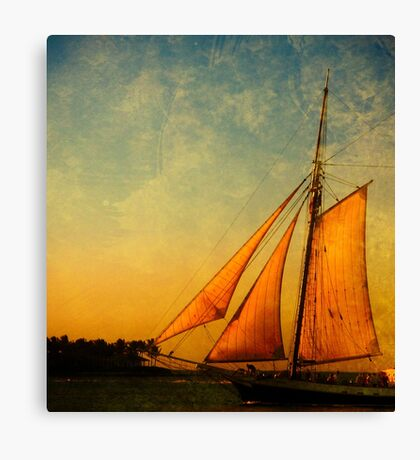 The America 2 Canvas Print