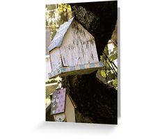 Forgotten Birdhouses Greeting Card