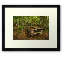 Abandoned Chevelle in Cape Breton Framed Print